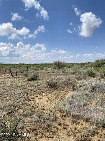 200 Outback Drive, Las Cruces, NM 88012 (MLS #2102293) :: Las Cruces Real Estate Professionals