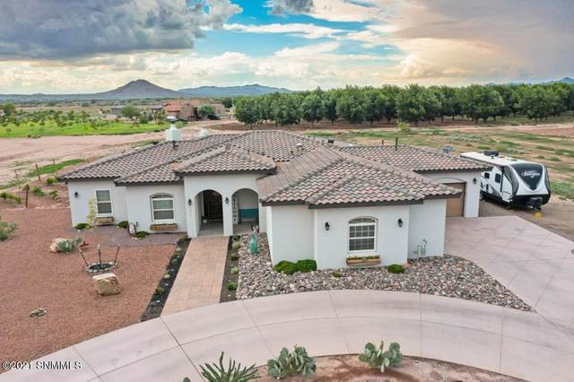 4696 Rociante Drive, Las Cruces, NM 88005 (MLS #2102308) :: Agave Real Estate Group