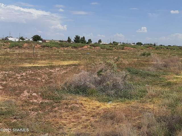 477 Dorado Lane, Chaparral, NM 88081 (MLS #2102351) :: Better Homes and Gardens Real Estate - Steinborn & Associates