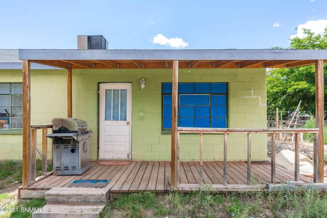 1007 Montezuma Avenue, Tularosa, NM 88352 (MLS #2102354) :: Agave Real Estate Group