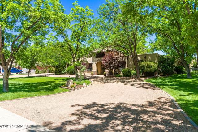 131 Mimosa Lane, Las Cruces, NM 88001 (MLS #2102431) :: Las Cruces Real Estate Professionals