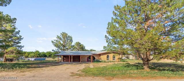 5844 Leasburg Drive, Las Cruces, NM 88007 (MLS #2102432) :: Better Homes and Gardens Real Estate - Steinborn & Associates