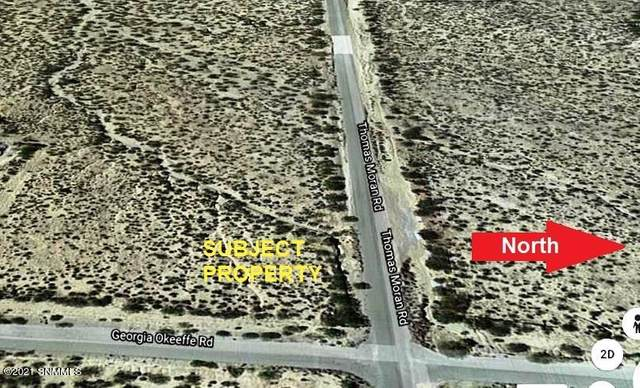 5850 Georgia Okeeffe Road, Las Cruces, NM 88011 (MLS #2102464) :: Better Homes and Gardens Real Estate - Steinborn & Associates