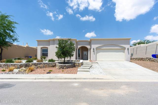 2917 E Springs Road, Las Cruces, NM 88011 (MLS #2102478) :: Better Homes and Gardens Real Estate - Steinborn & Associates