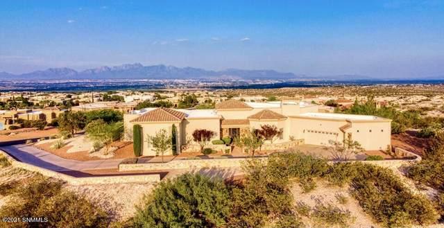 8176 Constitution Road, Las Cruces, NM 88007 (MLS #2102518) :: Las Cruces Real Estate Professionals