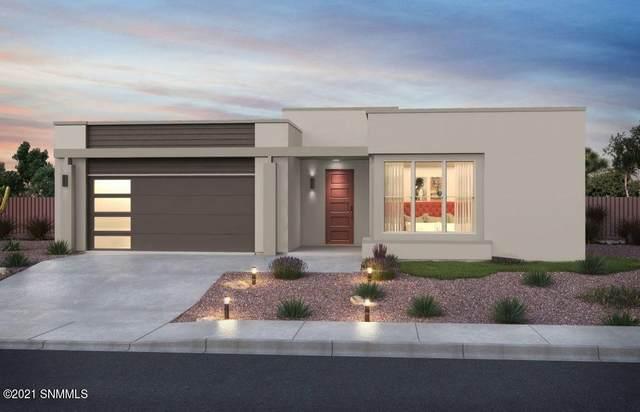 3049 Doug Rains Street, Las Cruces, NM 88011 (MLS #2102519) :: Las Cruces Real Estate Professionals