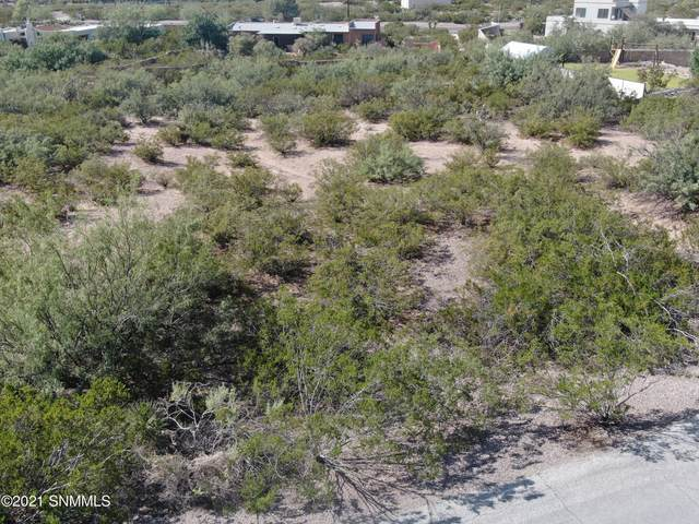 4233 Colt Road, Las Cruces, NM 88011 (MLS #2102539) :: Better Homes and Gardens Real Estate - Steinborn & Associates