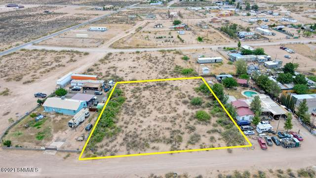 2045&2065 Green Tree Loop, Chaparral, NM 88081 (MLS #2102548) :: Better Homes and Gardens Real Estate - Steinborn & Associates