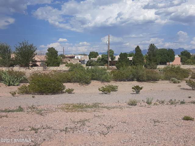 001 Chiricahua, Las Cruces, NM 88012 (MLS #2102615) :: Better Homes and Gardens Real Estate - Steinborn & Associates