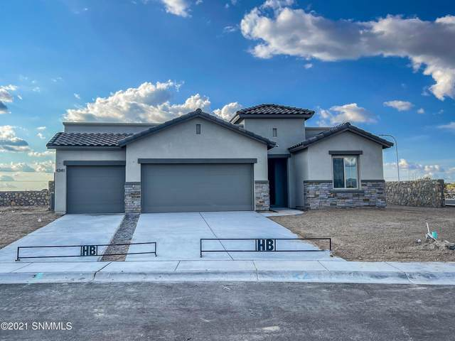 4341 Tawny Park Road, Las Cruces, NM 88011 (MLS #2102636) :: Better Homes and Gardens Real Estate - Steinborn & Associates