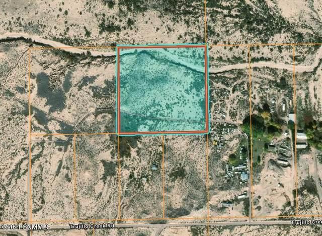 0 Tbd, Hillsboro, NM 88042 (MLS #2102641) :: Las Cruces Real Estate Professionals