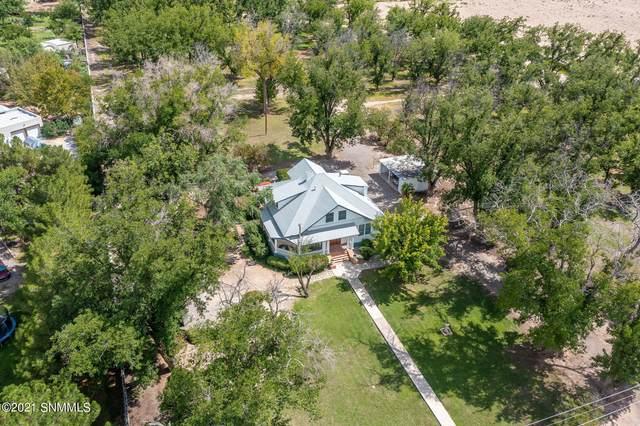 1445 W University Avenue, Mesilla, NM 88046 (MLS #2102644) :: Better Homes and Gardens Real Estate - Steinborn & Associates