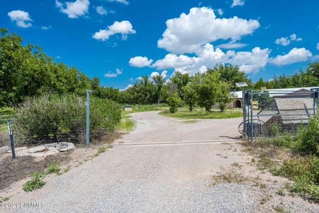 317 Blue Sky Lane, Mesilla Park, NM 88047 (MLS #2102661) :: Better Homes and Gardens Real Estate - Steinborn & Associates