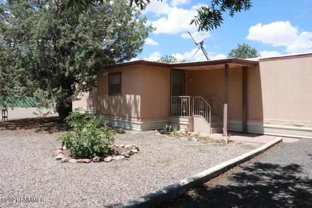 180 NE Lewis Lane, Deming, NM 88030 (MLS #2102716) :: Agave Real Estate Group