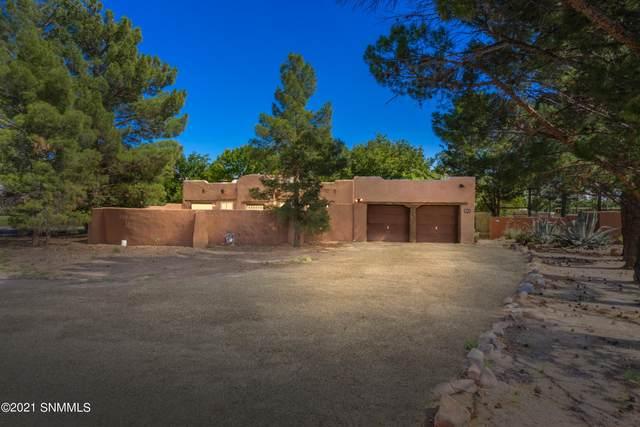620 E Organ Road, Mesilla Park, NM 88047 (MLS #2102733) :: Las Cruces Real Estate Professionals