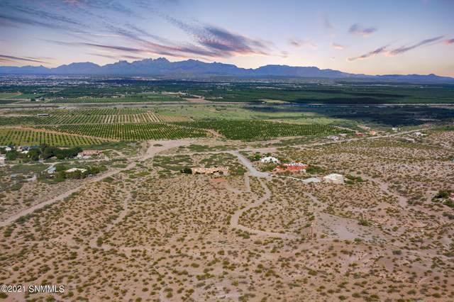 5790 Vista Verde Road, Las Cruces, NM 88005 (MLS #2102755) :: Better Homes and Gardens Real Estate - Steinborn & Associates