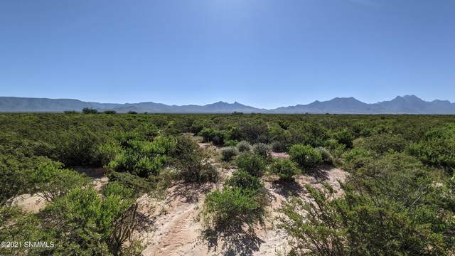 7660 Rabbit Run Lot 3 Road, Las Cruces, NM 88012 (MLS #2102759) :: Better Homes and Gardens Real Estate - Steinborn & Associates