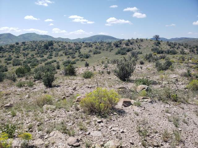 8 Child Of Water, Hillsboro, NM 88042 (MLS #2102791) :: Agave Real Estate Group