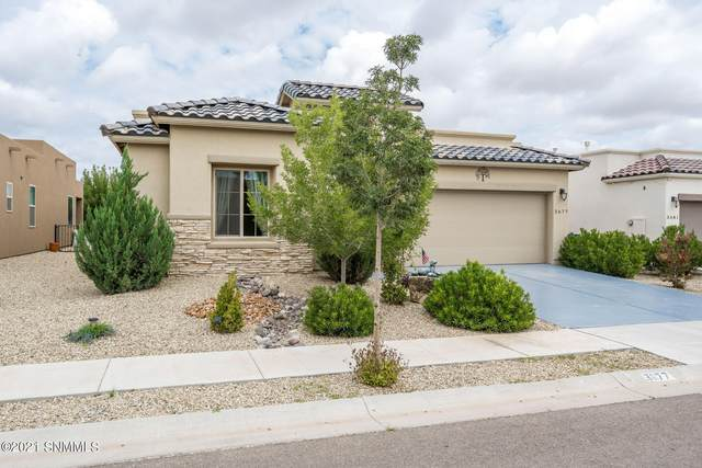 3677 Cabrillo Court, Las Cruces, NM 88012 (MLS #2102817) :: Better Homes and Gardens Real Estate - Steinborn & Associates