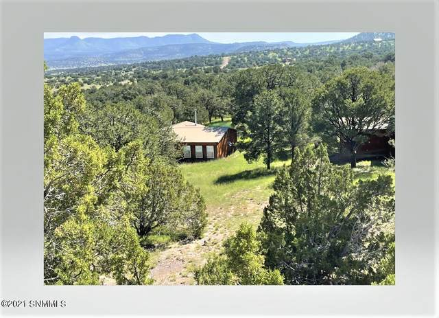 79 High Plains Drive, DATIL, NM 87821 (MLS #2102832) :: Better Homes and Gardens Real Estate - Steinborn & Associates