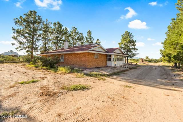 405 De Lara Estates Drive, Chaparral, NM 88081 (MLS #2102840) :: Better Homes and Gardens Real Estate - Steinborn & Associates