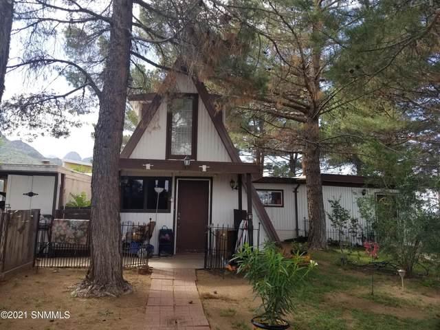 15860 Padre La Rue Street, Organ, NM 88052 (MLS #2102841) :: Agave Real Estate Group