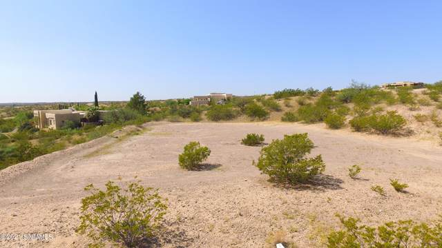 6775 Desert Blossoms Road, Las Cruces, NM 88007 (MLS #2102864) :: Agave Real Estate Group