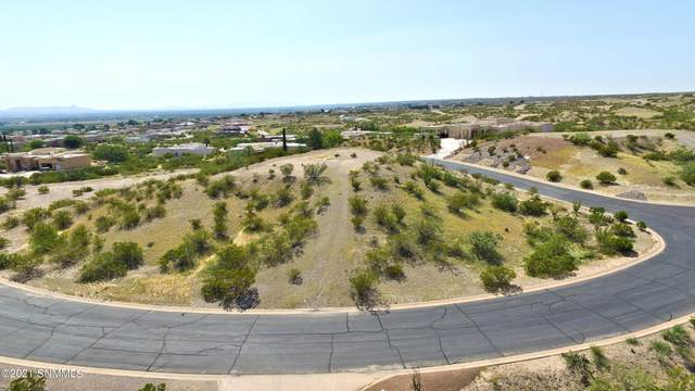 6785 Desert Blossoms Road, Las Cruces, NM 88007 (MLS #2102865) :: Agave Real Estate Group