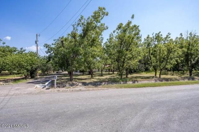 2201 Wildwind Road, Las Cruces, NM 88007 (MLS #2102911) :: Agave Real Estate Group