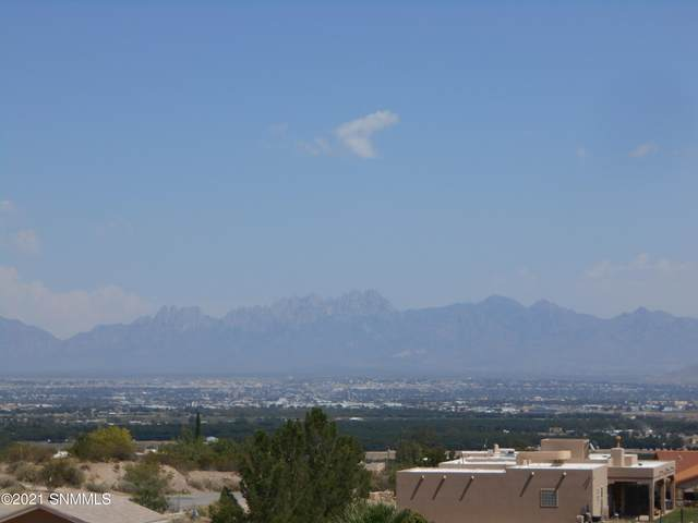 5625 Red Wolf Lane, Las Cruces, NM 88007 (MLS #2102931) :: Agave Real Estate Group