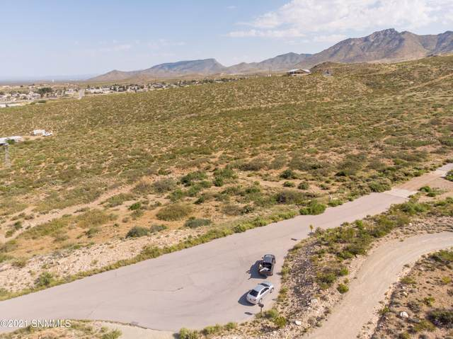15565 Space Murals Lane, Las Cruces, NM 88012 (MLS #2102945) :: Better Homes and Gardens Real Estate - Steinborn & Associates