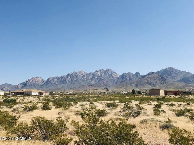 5073 Lost Padre Mine, Las Cruces, NM 88011 (MLS #2102956) :: Better Homes and Gardens Real Estate - Steinborn & Associates