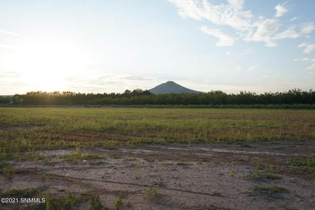 0000 Cuesta Road, Las Cruces, NM 88007 (MLS #2103003) :: Agave Real Estate Group