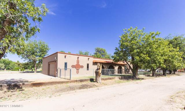 1041 Banegas Road, Las Cruces, NM 88007 (MLS #2103033) :: Las Cruces Real Estate Professionals