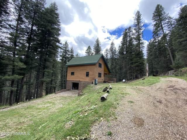9 Sneaky Pete Court, CLOUDCROFT, NM 88317 (MLS #2103041) :: Las Cruces Real Estate Professionals