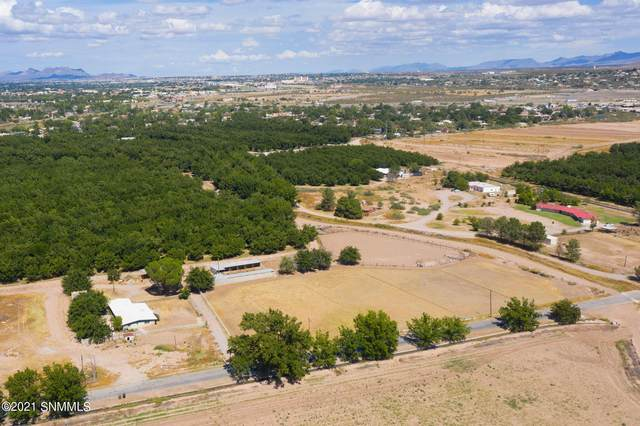 401 Holy Cross Road, Mesilla Park, NM 88047 (MLS #2103057) :: Las Cruces Real Estate Professionals