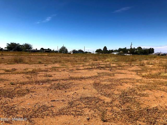 6835 Gopher Road, Las Cruces, NM 88012 (MLS #2103063) :: Better Homes and Gardens Real Estate - Steinborn & Associates