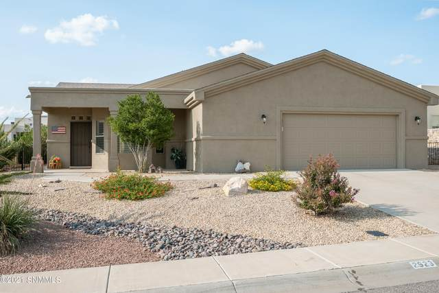 2923 Long Bow Loop, Las Cruces, NM 88011 (MLS #2103070) :: Better Homes and Gardens Real Estate - Steinborn & Associates