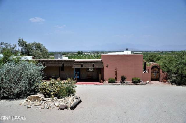 2351 Mesilla Hills Drive, Las Cruces, NM 88005 (MLS #2103100) :: Better Homes and Gardens Real Estate - Steinborn & Associates