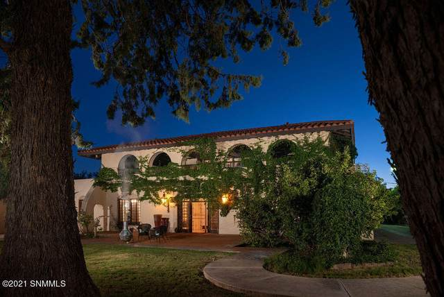 3120 Good Shepherd Road, Las Cruces, NM 88005 (MLS #2103113) :: Better Homes and Gardens Real Estate - Steinborn & Associates