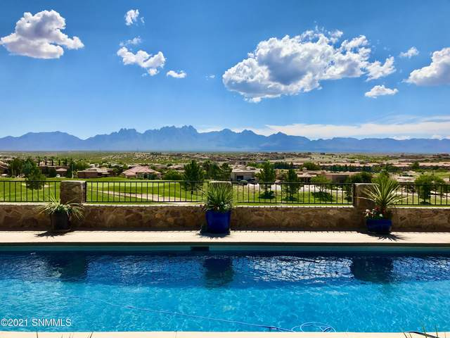 1164 Cave Springs Trail, Las Cruces, NM 88011 (MLS #2103115) :: Better Homes and Gardens Real Estate - Steinborn & Associates