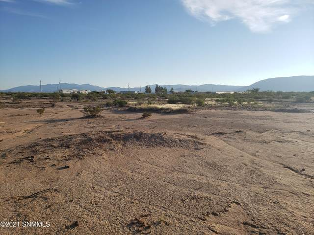 000 Tranquilo, Las Cruces, NM 88012 (MLS #2103122) :: Better Homes and Gardens Real Estate - Steinborn & Associates