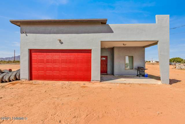 100 Irma Road, Chaparral, NM 88081 (MLS #2103148) :: Agave Real Estate Group
