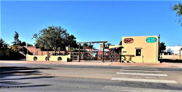 2230 Avenida De Mesilla, Mesilla, NM 88046 (MLS #2103151) :: Better Homes and Gardens Real Estate - Steinborn & Associates