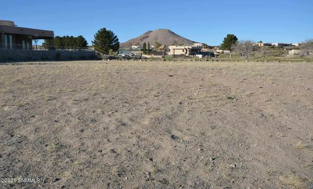 6880 Camino Blanco, Las Cruces, NM 88007 (MLS #2103157) :: Agave Real Estate Group