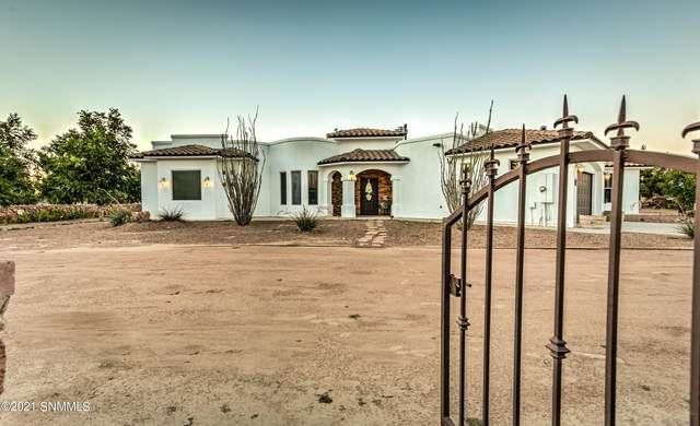 80 Dos Amigos Road, Anthony, NM 88021 (MLS #2103164) :: Las Cruces Real Estate Professionals