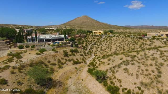6638 Vista Del Reino, Las Cruces, NM 88007 (MLS #2103190) :: Better Homes and Gardens Real Estate - Steinborn & Associates