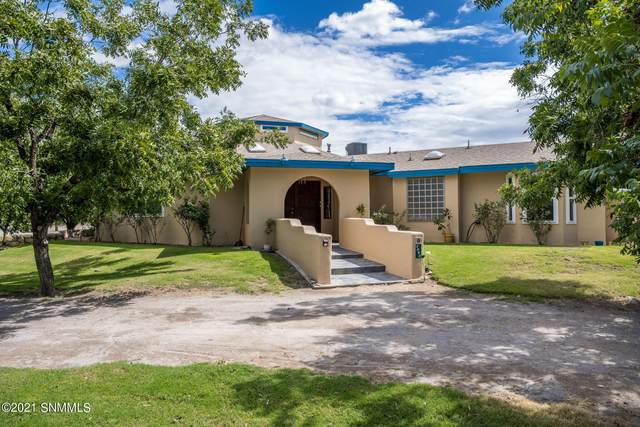 3940 Lost Lane, Las Cruces, NM 88007 (MLS #2103191) :: Better Homes and Gardens Real Estate - Steinborn & Associates
