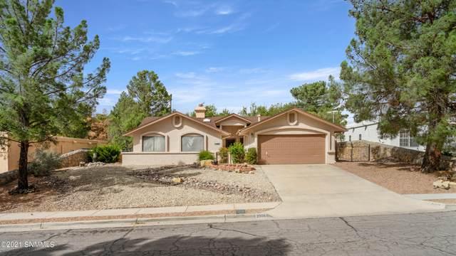 3006 Buena Vida Circle, Las Cruces, NM 88011 (MLS #2103202) :: Agave Real Estate Group