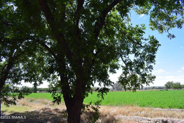 2100 W Ohara Road, Anthony, NM 88021 (MLS #2103210) :: Better Homes and Gardens Real Estate - Steinborn & Associates